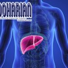 3 Cara Mendeteksi Penyakit Liver, Nomor 2 Harus Diperhatikan