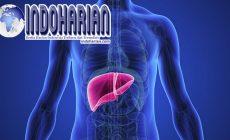 Permalink to 3 Cara Mendeteksi Penyakit Liver, Nomor 2 Harus Diperhatikan