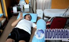 Permalink to KASIHAN! Mat Solar Diserang Penyakit Hingga Jadi Seperti Ini