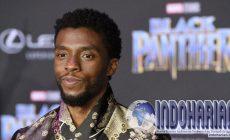 Permalink to BREAKING NEWS! Aktor Black Panther Chadwick Boseman Meninggal