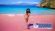 Permalink to Menakjubkan! Pasir Pink Beach Flores Berwarna Merah Muda