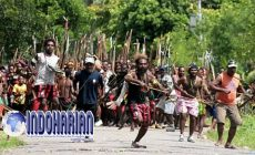 Permalink to Bentrok Antar Suku Papua Karena Permasalahan Hak Tanah