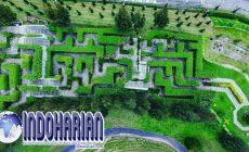 Permalink to Taman Labirin Simalem Resort Tanah Karo Sumut