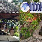 Wisata Kampung Flory Yang Wajib di Kunjungi di DIY