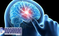 Permalink to Terungkap! Gangguan Fatal Otak Langka Dapat Dideteksi