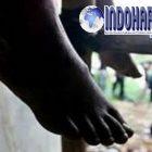 Sumpah Sedih Banget! Surat Wasiat Yang Menyedihkan Ditulis Oleh Pria di Jepara
