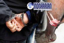 Bos Gengster Ngaku Kebal Senjata Api, Ditembak Polisi Malah…
