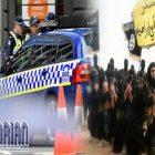 Pria di Melbourne Tega Bunuh Istrinya Gara-gara Tolak Gabung ke ISIS