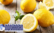 Permalink to Meletakkan Potongan Lemon di Samping Tempat Tidur, Anda Akan Terkejut Khasiatnya.