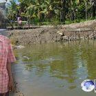 Kisah Pilu Kakek Pencuri Ikan Bandeng Hanya Senilai Rp 200